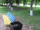 Ukrainian Flag Bench